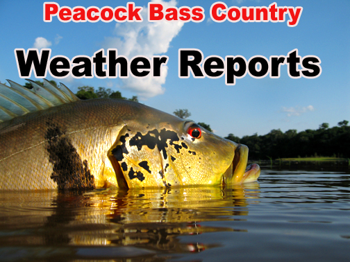 Peacock Bass Country Weather Reports PBA