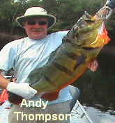 Andy Thompson