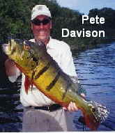 Peacock Bass Fishing - Pete Davison
