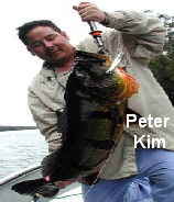 Peacock Bass Fishing - Peter Kim